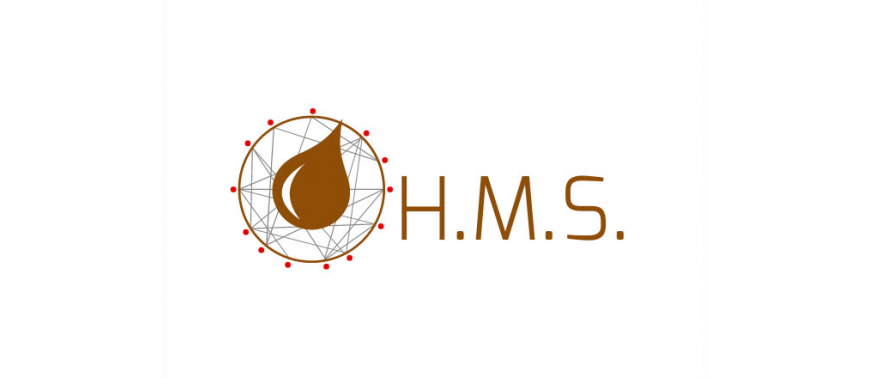 Mineralogramma H.M.S.