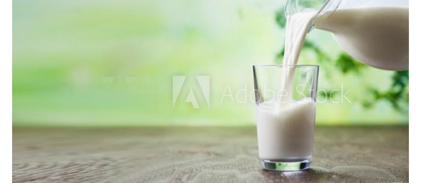 I benefici della dieta proteica