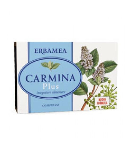 Carmina Plus 24cpr 19,2g